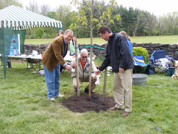 Commisionsers planting a tree