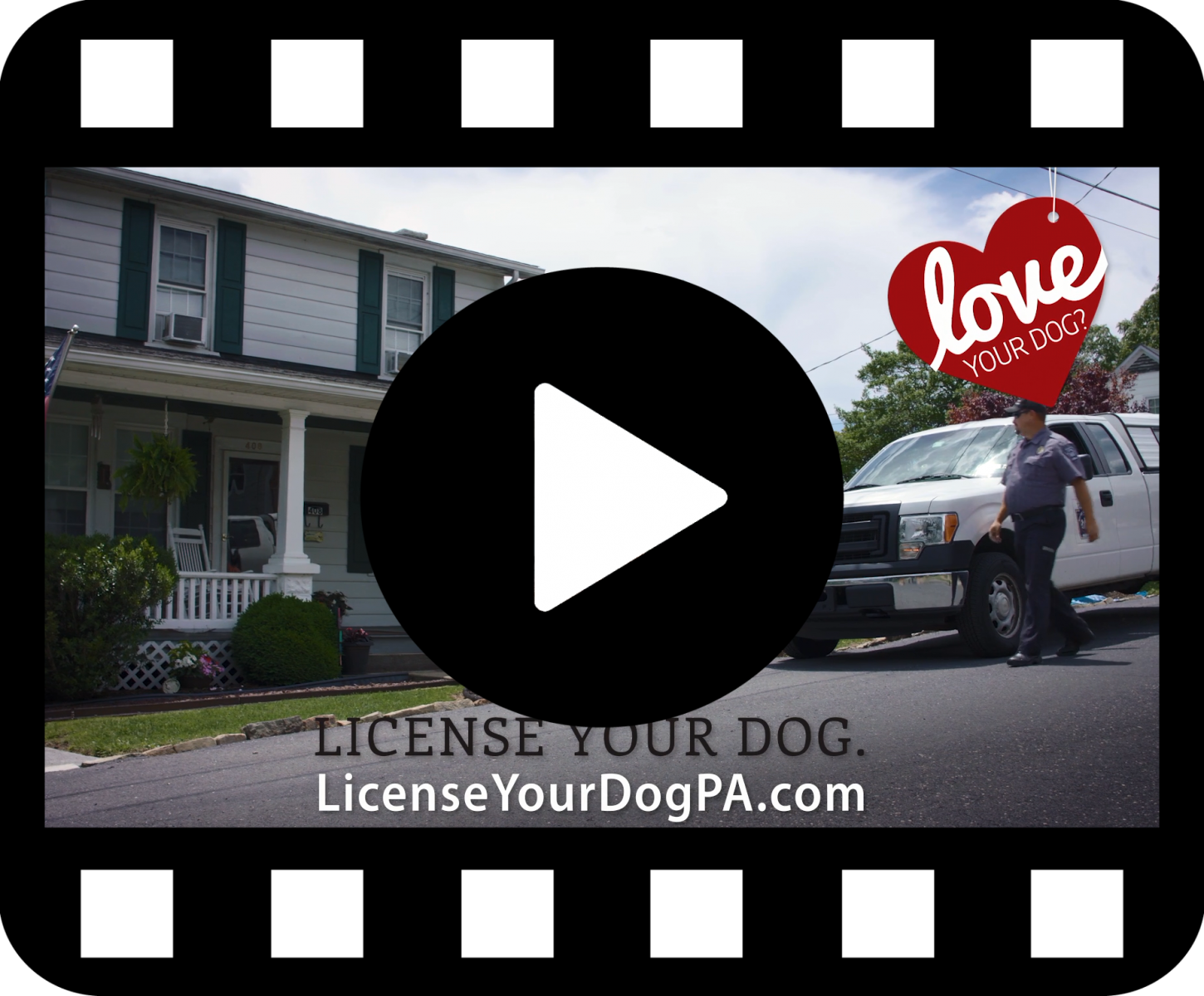 Dog License Video Link