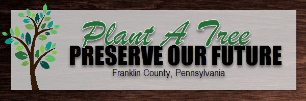 Plant a Tree, Preserve our Future logo